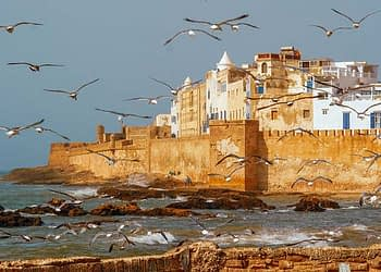 Morocco Imperial Cities Tour from Casablanca 12 days
